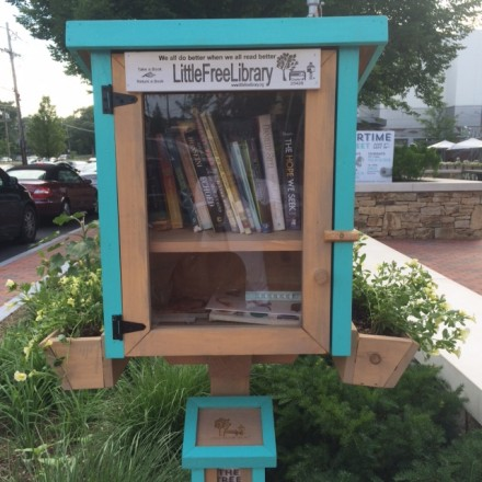 Newton's First Little Free Library