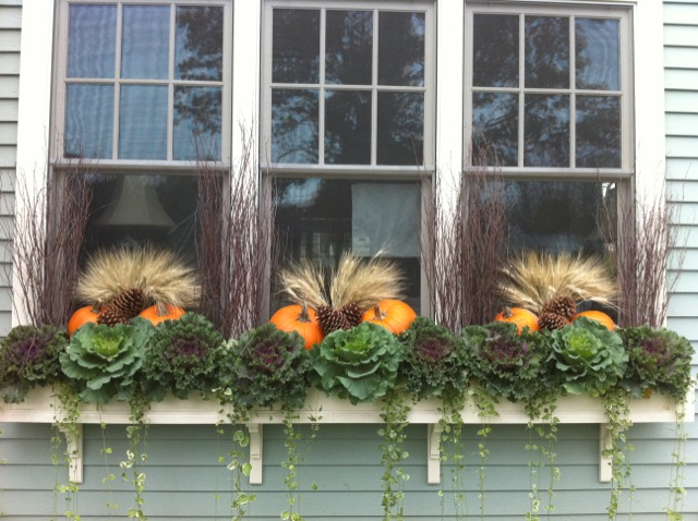 Fleuri Garden Designs Zoe Forbes best window boxes container gardens Boston MetroWest Newton Wellesley Autumn Fall decorations ILoveNewtonMA ILoveNewton I love newton