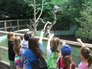 school vacation week at Franklin Park Zoo MA