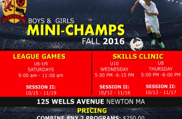 Soccer Clinics at Valeo