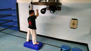 Alston Street Boxing, Zhen Ren Chuan Martial Arts Cnter