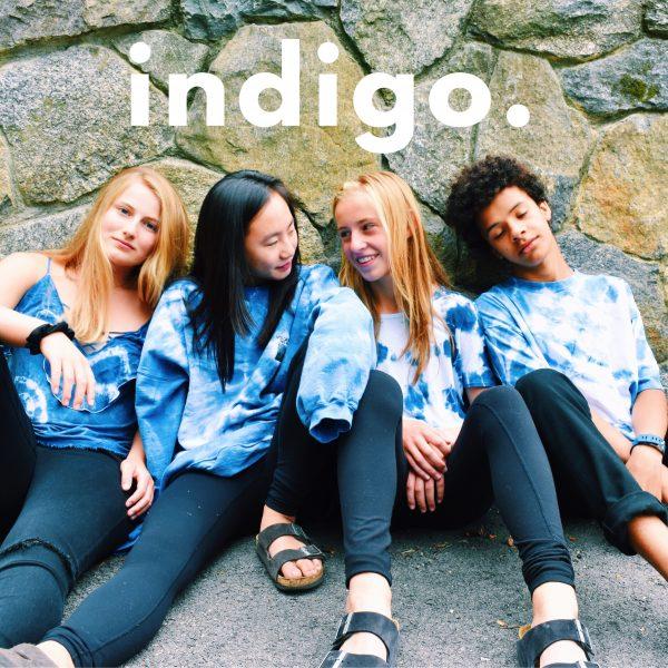 indigo clothing co